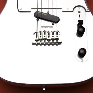 OZZtosh LUMA B Guitar Closeup